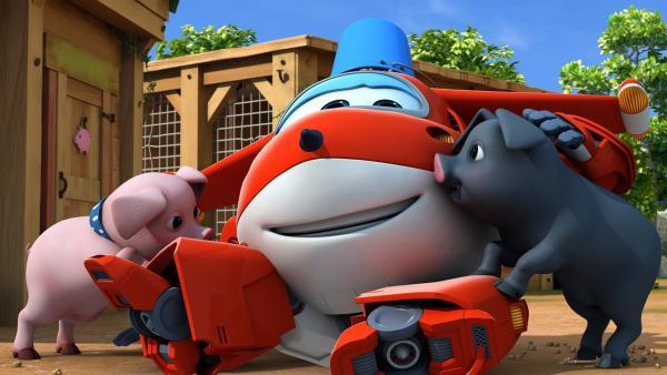 Die Schweine lieben Jett und wollen mit ihm spielen. | Rechte: KiKA/FunnyFlux/QianQi/EBS/CJ E&M