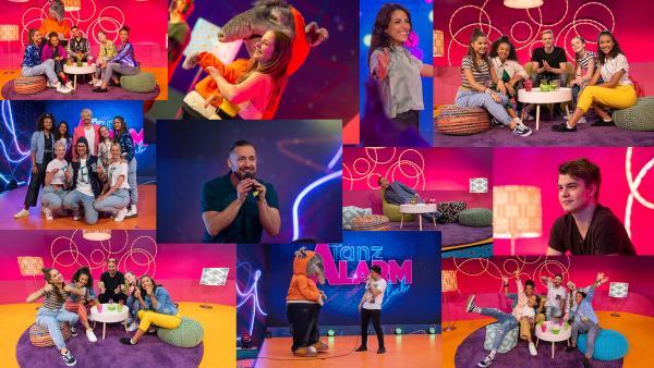 Best of TanzAlarm Club 2019 | Rechte: KiKA