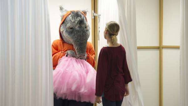 Der TanzTapir will einen Flamingo-Rock anprobieren, da er sich dick und grau in seiner Haut fühlt. | Rechte: KiKA/MingaMedia