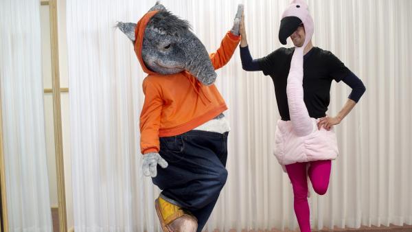 Wie gerne wäre der TanzTapir ein bunter Flamingo und könnte elegant auf einem Bein stehen. | Rechte: KiKA/MingaMedia
