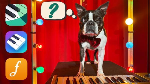 Ob Jimmy mit diesen Apps auch Klavierspielen lernen kann? | Rechte: KiKA