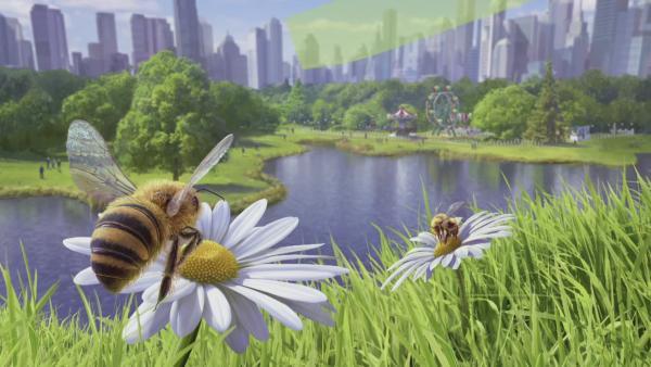 Bee Simulator | Rechte: KiKA