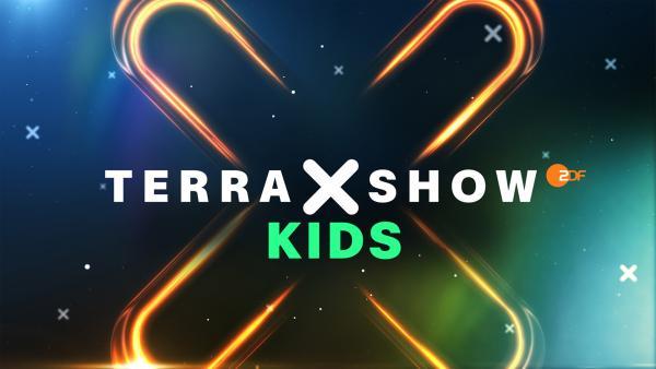 Terra X Show - Kids | Rechte: ZDF/Brand New Media