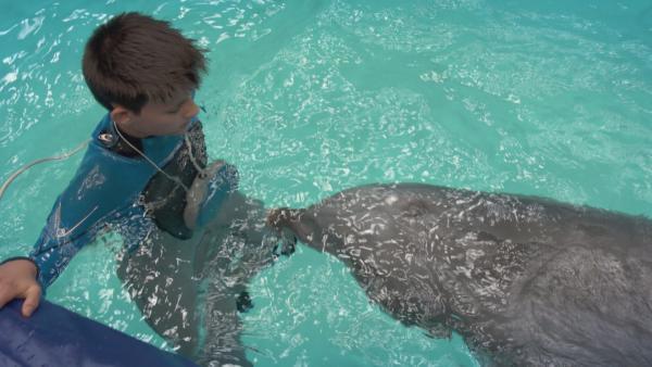 Milan testet, ob sein Herzschlag vom Delfin gehört wird. | Rechte: NDR/NTR/Ketnet 2019
