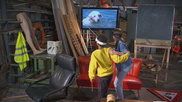 Lina und Jamey testen, wie sich ein blinder Hund fortbewegt. | Rechte: NDR/NTR/Ketnet 2019