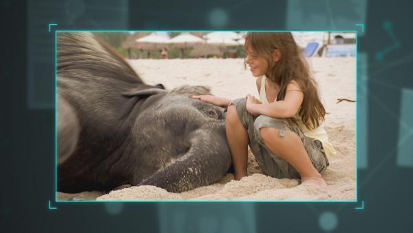 Ning Nong mit Amber am Strand von Thailand. | Rechte: NDR/NTR/Ketnet 2019