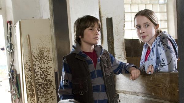 Greta (Enya Elstner) und Jonas (Fynn Henkel) haben auf dem Pferdehof einen schlimmen Verdacht. | Rechte: SWR/Maria Wiesler