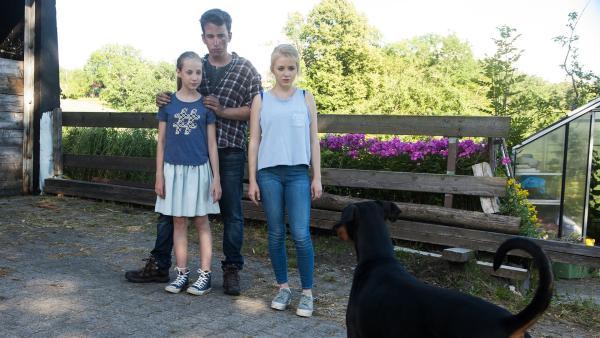 Nelly (Jule-Marleen Schuck) , Paulina  (Tabea Hug)  und Pawel  (Moritz Knapp) sind überrascht von dem aufdringlichen fremden Dobermann.   Rechte: SWR/Maria Wiesler