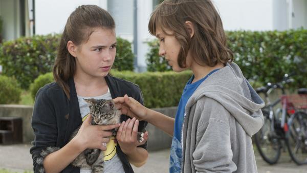 Leo (Phillis Lara Lau) hat Jans (Giuliano Marieni) Kätzchen Socke wieder gefunden. | Rechte: SWR/Maria Wiesler