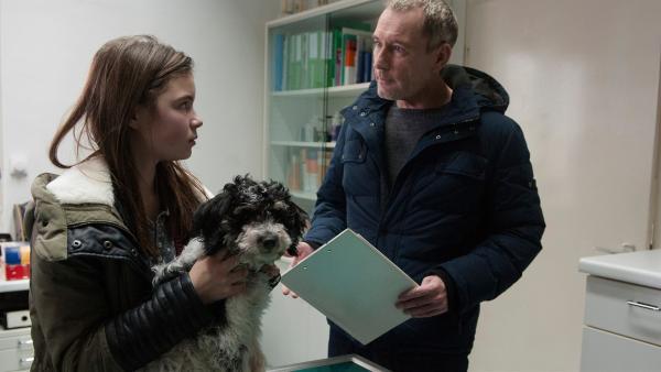 Dr. Hansen (Heikko Deutschmann) untersucht Jojo, Leos (Phillis Lara Lau) kleinen Welpen,  auf Krankheiten. | Rechte: SWR/Maria Wiesler