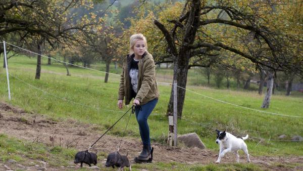 Cookie (Jule Schuck) muss mit zwei Minischweinen um Nellys Aufmerksamkeit buhlen.    Rechte: SWR/Maria Wiesler