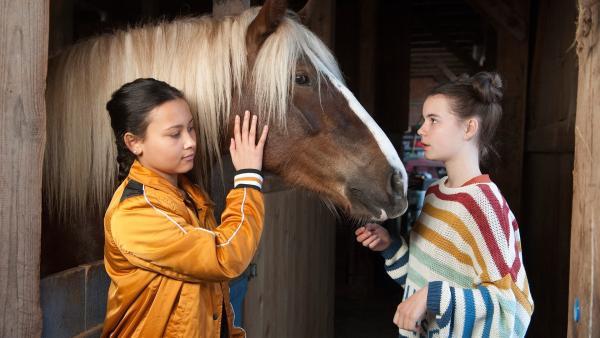 Leo (Philis Lara Lau) und Charlie (Smilla Kunkel) sind die absoluten Pferdenärrinnen.  | Rechte: SWR/Maria Wiesler