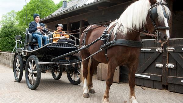 Jan (Guiliano Marieni) hat die Kutsche geklaut, um Charlie (Smilla Kunkel) zu beeindrucken.  | Rechte: SWR/Maria Wiesler