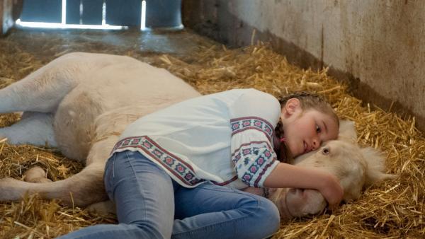 Lucy (Paulina Schnurrer) ist verzweifelt: ihr Fohlen ist schwer krank!  | Rechte: SWR/Maria Wiesler