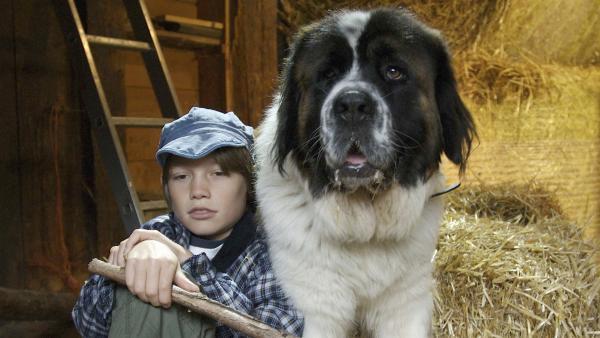 Jonas hat großen Kummer: Sein Hund Oskar ist krank und soll eingeschläfert werden. | Rechte: SWR/Maria Wiesler