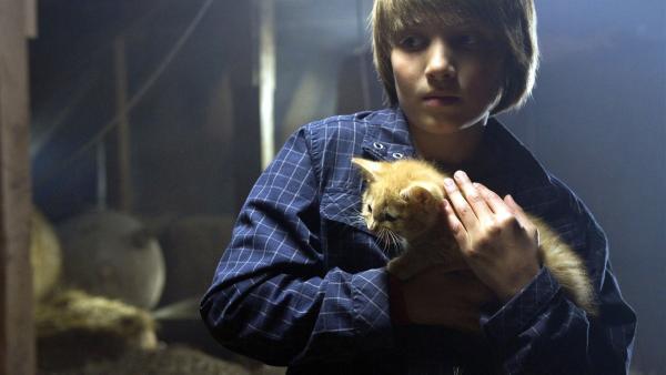 Meint Quirin Emmanuel es wirklich gut mit dem kleinen Kätzchen? | Rechte: SWR/Maria Wiesler