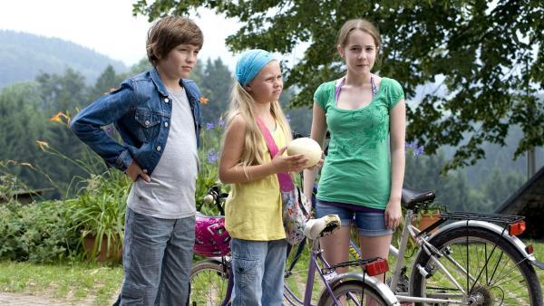 v.li.: Jonas (Fynn Henkel), Lilie (Lotte Hanné) und Greta (Enya Elstner) wissen nicht so recht, was sie von den Nandus und ihren Eiern halten sollen.   Rechte: SWR/Maria Wiesler