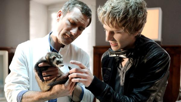 Bertie (Silas Breiding), Praktikant von Tierarzt Dr. Hansen (Heikko Deutschmann), bringt ein Frettchen mit in die Praxis. | Rechte: SWR/Maria Wiesler