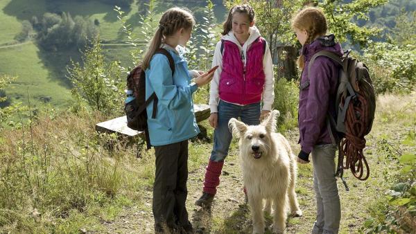 Die Mädchen auf ihrer Bergtour. Greta (Enya Elstner, li.), Celine (Zora Achtnich, re.) und Chiara (Anouk Bödeker, hinten). | Rechte: SWR/Maria Wiesler