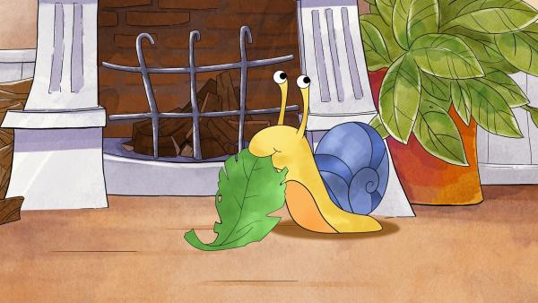 Die Schnecke frisst glücklich ein Salatblatt. Tilda und Schnecki sind die besten Freunde. | Rechte: MDR/WunderWerk