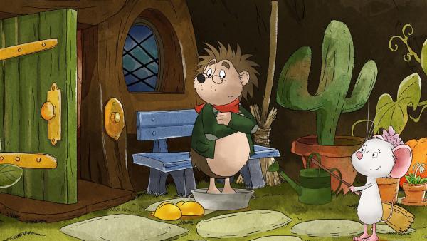 Rupert bekommt ein eiskaltes Fußbad. | Rechte: MDR/WunderWerk