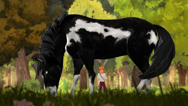 Tom entdeckt ein prachtvolles Wildpferd. | Rechte: HR/2019 Cyber Group