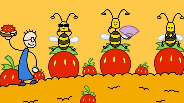 TOM ist Reiseleiter für die Bienen. Aber es allen Bienen Recht zu machen ist gar nicht so einfach. | Rechte: SWR/Andreas Hykade
