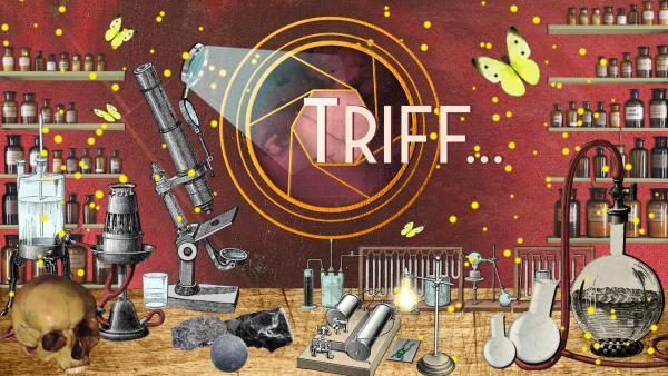 Triff berühmte Wissenschaftlerinnen | Rechte: KiKA