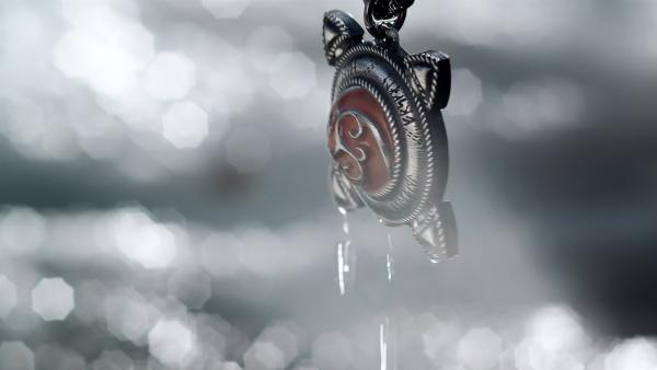 Das Medaillon, das den Weg zu Odins Gold weisen soll, ist gefunden! | Rechte: NDR/NordicStories