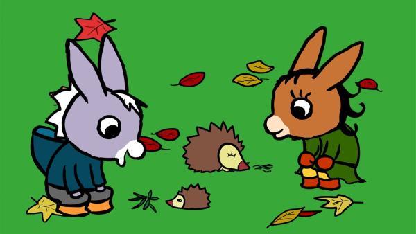 TROTRO und Lilli erleben beim Füttern der Igel eine kleine Überraschung.   Rechte: KiKA/Storimages