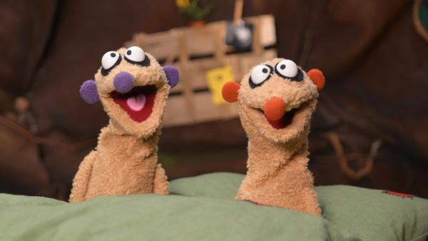 Jan & Henry | Rechte: rbb/bigSmile Ent./NDR/MDR