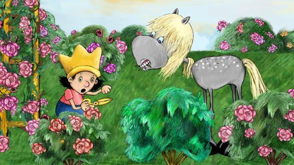 Grete nascht gerne von den königlichen Rosen, obwohl das verboten ist. | Rechte: rbb/Imediat GbR