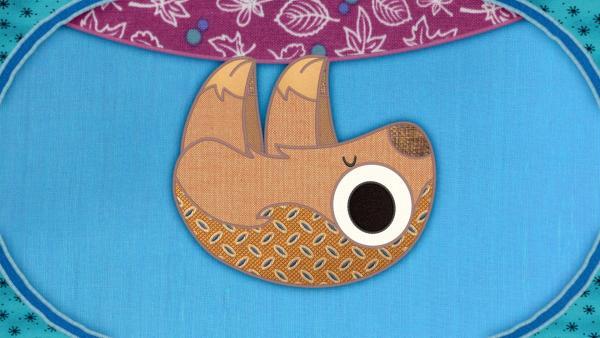Das Faultier auf meiner Schmusedecke hat ein Problem: Es kann nicht schlafen. | Rechte: rbb/Studio FILM BILDER