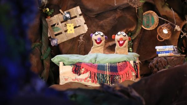 Ist ein verzweifeltes Walross im Dunkeln für die schlaflose Nacht von Jan und Henry verantwortlich? | Rechte: rbb/bigSmile