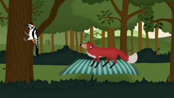 Ein Fuchs reist auf einem fliegenden Teppich durch den Wald und trifft viele andere Tiere. | Rechte: rbb/MDR/NDR/finally GmbH & Co.KG
