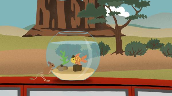 Ein kleiner Fisch reist in einem Aquarium, das auf einem Autodach steht, durch die Wüste. | Rechte: rbb/MDR/NDR/finally GmbH & Co.KG