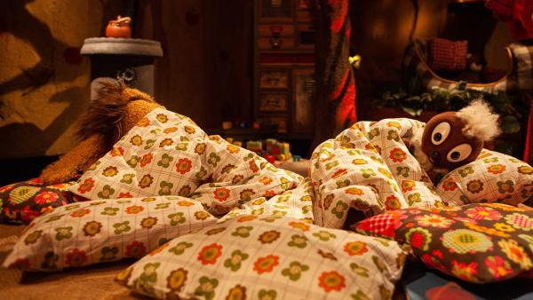 Pitti ist endlich eingeschlafen. | Rechte: rbb/Christian Merten