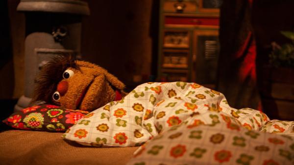Moppi kann nicht einschlafen. | Rechte: rbb/Christian Merten