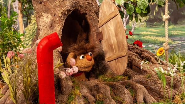 Moppi besucht Pitti in seiner Höhle. | Rechte: rbb/Christian Merten