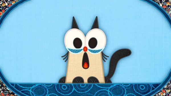 Die Katze auf meiner Schmusedecke möchte gestreichelt werden.   Rechte: rbb/Studio FILM BILDER