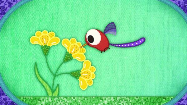 Der Kolibri auf meiner Schmusedecke möchte Nektar trinken.   Rechte: rbb/Studio FILM BILDER