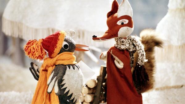 Herr Fuchs und Frau Elster treffen sich im Märchenwald. | Rechte: rbb media
