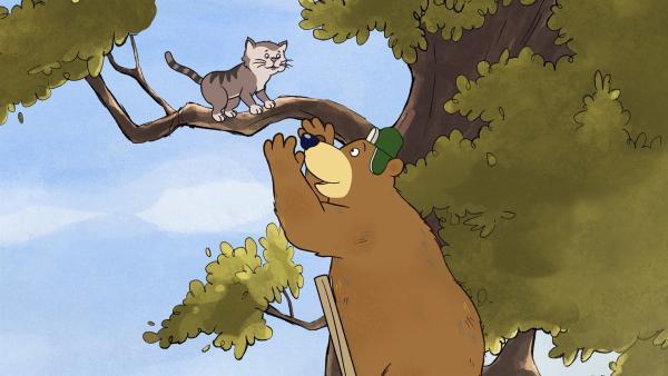 Dr. Brumm will einer Katze vom Baum herunterhelfen und steigt auf einer Leiter zu ihr hoch. | Rechte: rbb/WunderWerk/TRIKK 17