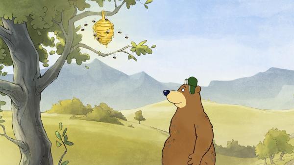 Dr. Brumm folgt einer Biene und bekommt Lust auf Honig. | Rechte: rbb/WunderWerk/TRIKK 17