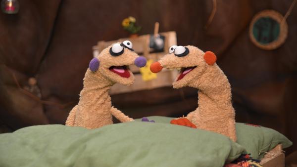 Die Erdmännchen Jan & Henry werden durch ein seltsames Geräusch in Ihrer Küche aus dem Schlaf gerissen. | Rechte: rbb/bigSmile Ent./NDR/MDR
