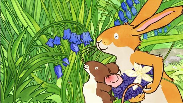 Mit seiner Freundin, der kleinen Feldmaus, begibt sich der kleine braune Hase auf die Suche nach dem Duft und sie finden herrlich duftende Blumen auf der Wiese. | Rechte: KiKA/SLR Productions Australia Pty.Ltd./Scrawl Studios Pte Ltd./hr/ARD