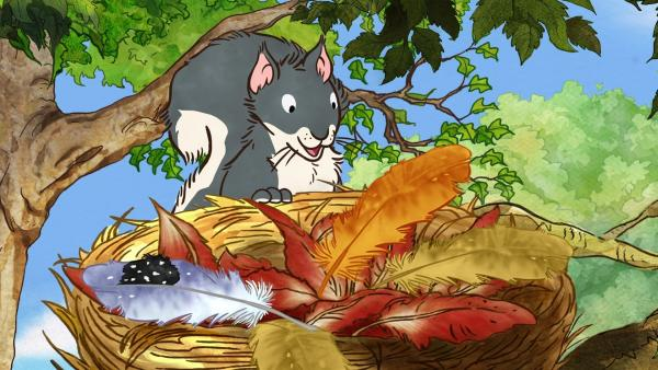 Das kleine Grauhörnchen erreicht das Nest des kleinen roten Vogels und entdeckt die Feder. | Rechte: KiKA/SLR Productions Australia Pty.Ltd./Scrawl Studios Pte Ltd./hr/ARD