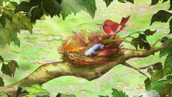 Ein kleiner roter Vogel hat die Feder in sein Nest gebracht. | Rechte: KiKA/SLR Productions Australia Pty.Ltd./Scrawl Studios Pte Ltd./hr/ARD