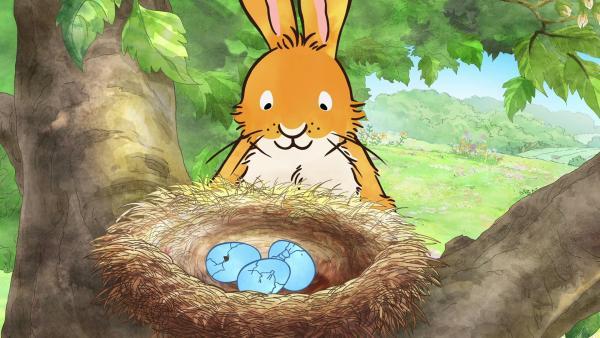 Der kleine braune Hase entdeckt Blauvogels Nest. | Rechte: KiKA/SLR Productions Australia Pty.Ltd./Scrawl Studios Pte Ltd./hr/ARD