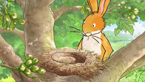 Und plötzlich findet der kleine braune Hase niemanden mehr im Nest vor. | Rechte: KiKA/SLR Productions Australia Pty.Ltd./Scrawl Studios Pte Ltd./hr/ARD
